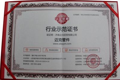 行业示范证书